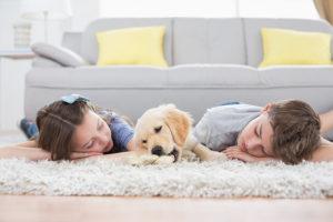 Gainesville Carpet Cleaner