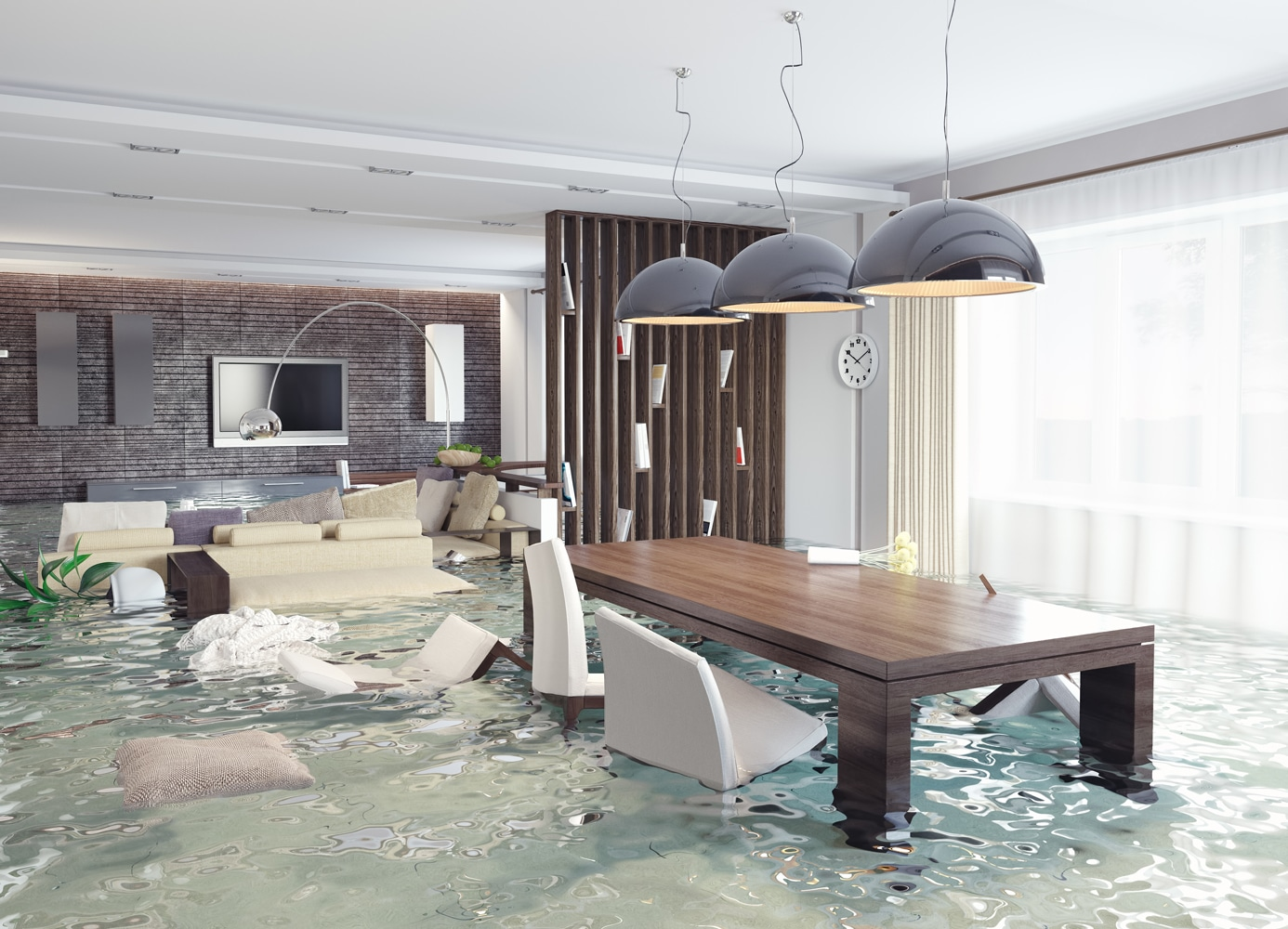 water damage company in gainesville