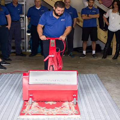 Gainesville Area Rug Cleaning Services