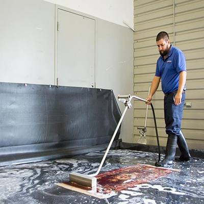 gainesville-steam-cleaning-services