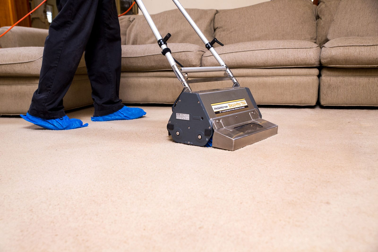 carpet cleaning company Gainesville