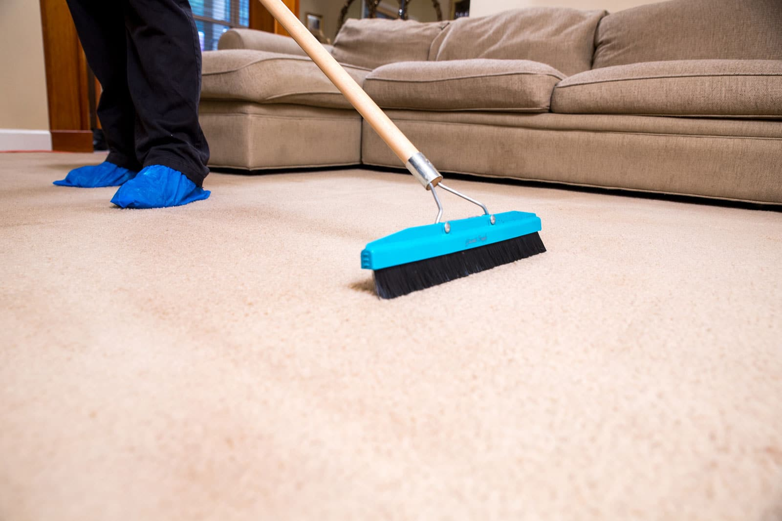 gainesville carpet cleaner