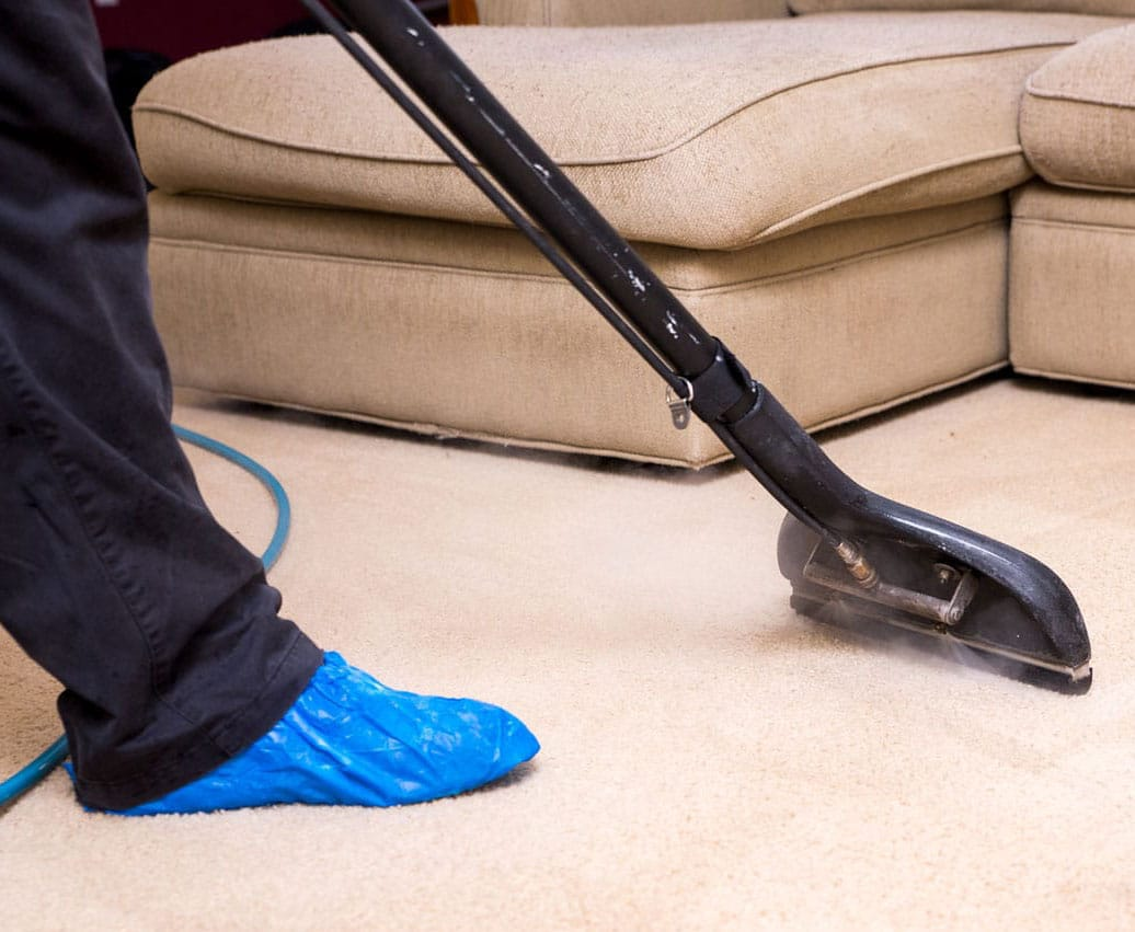 professional carpet cleaning Gainesville fl
